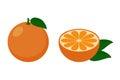 Orange and half of orange.Vector. Royalty Free Stock Photo