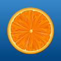 Orange half - vector Royalty Free Stock Photo
