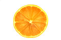 Orange isolated on a white background Royalty Free Stock Photo