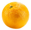 Orange isolated on the white background Royalty Free Stock Photo