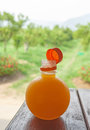 Orange juice in bottle on the wood table with green background at orange garden chiang mai thailand Royalty Free Stock Photo