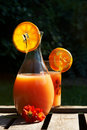 Orange juice in the garden Stock Photography
