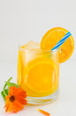 Orange juice in a glass Royalty Free Stock Photo