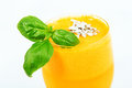 Orange juice from a juicer Stock Photography