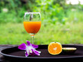 Orange juice and orchid on back plate Royalty Free Stock Images