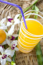 Orange juice with straw Royalty Free Stock Photo