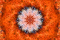 Orange Kaleidoscope Stock Photography
