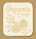 Orange label fresh organic vector illustration retro fruitl design vector old paper texture background Royalty Free Stock Photo