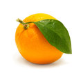 Orange with leaf. Royalty Free Stock Photos