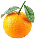 Orange with leaves isolated on a white background image maximum depth of field clipping path Stock Photos