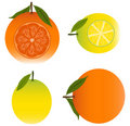Orange and Lemon Royalty Free Stock Photography