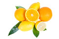 Orange and lemon fruit with leaves isolated on white background Royalty Free Stock Images