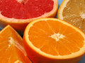 Orange, lemon and grapefruit Stock Image
