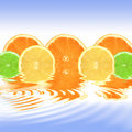 Orange, Lemon and Lime Abstract Stock Photo