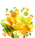 Orange, lemon and lime juice splash Stock Images