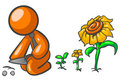 Orange man growing plants Stock Images