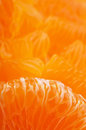 Orange mandarins background Royalty Free Stock Photography