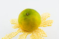 Orange mandarins on a white background Royalty Free Stock Photo