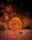 Orange Moon landscape Royalty Free Stock Photo