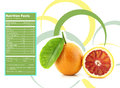 Orange nutrition facts creative design for with label Royalty Free Stock Photos