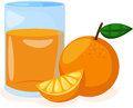 Orange and orange juice in a glass illustration of isolated Royalty Free Stock Image