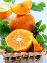 Orange and orange segments and mint Royalty Free Stock Photo