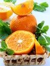 Orange and orange segments and mint Royalty Free Stock Photo