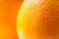 Orange peel Royalty Free Stock Photo