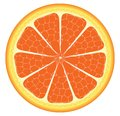 Orange piece or slice vector with different shade of Royalty Free Stock Images
