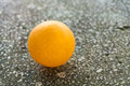 Orange ping pong on the floor Royalty Free Stock Photo