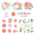 Orange ranunculus, pink rose, hydrangea, coral carnation, garden
