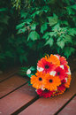 Orange and red bridal bouquet a beautiful fiery colored in front of ivy Royalty Free Stock Photo
