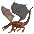 Orange red dragon a creature of myth and fantasy the is a fierce flying monster with horns and large teeth Stock Photography