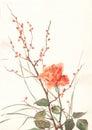 Orange rose watercolor painting Royalty Free Stock Photo