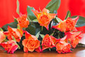 Orange roses with background horizontal Stock Photography