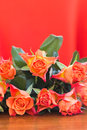 Orange roses with background vertical Stock Photos