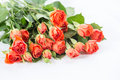 Orange roses bouquet of close up Stock Images