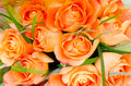 Orange roses a bouquet of selective focus Stock Images