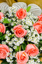 Orange roses flower bouquet Royalty Free Stock Photo