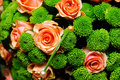 Orange roses and hardy green mums Royalty Free Stock Images