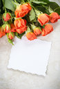 Orange roses on the table card for congratulations Royalty Free Stock Image