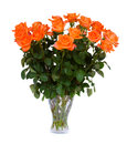 Orange roses in vase isolated on white background Royalty Free Stock Photos