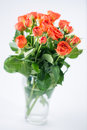 Orange roses in vase on on white background Stock Photography