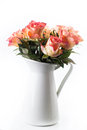 Orange roses in white jug  Stock Image