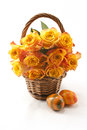 Orange roses in a wicker basket on a white background Stock Photography