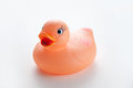 Orange rubber duck isolated on white background Royalty Free Stock Photo