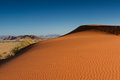 Orange sand dunes in the evening light sossuvlei namibia Royalty Free Stock Image