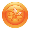 Orange shiny button with chestnut leaf Royalty Free Stock Images