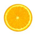 Orange slice Royalty Free Stock Photo