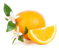 Orange with slice and blossom fruit whole green leaves flowers on white background Stock Photo
